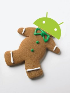 Le Samsung Galaxy sous Android 2.3.2 'Gingerbread' ?
