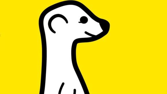Meerkat est désormais disponible au plus grand nombre sur le Play Store