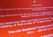 Cryptolocker, le spécialiste de l'extorsion de fonds