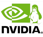 Nvidia : La parade du futur mais quand ?