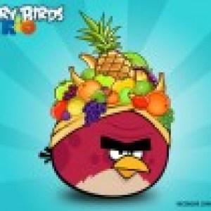 Angry Birds Rio est arrivé sur l'Android Market ! (MàJ)