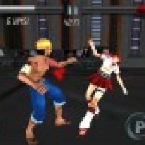 Further Beyond Fighting : un jeu de combat en 3D