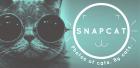 Snapcat : des photos de chats par des chats !