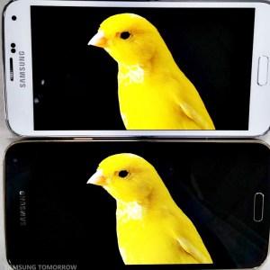 Plus de détails sur l'écran QHD AMOLED du Samsung Galaxy S5 LTE-A