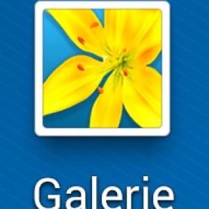 Aperçu de l'application Galerie sur Android