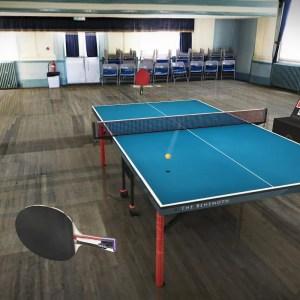 Table Tennis Touch est l'un des meilleurs jeux de tennis de table du Play Store
