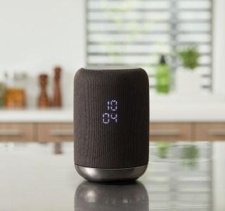 Sony Enceinte sans fil avec assistant Google intégré : un nom de produit on ne peut plus clair