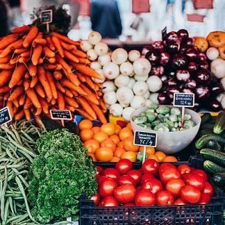 Les applications pour bien manger : notre sélection pour des repas sains