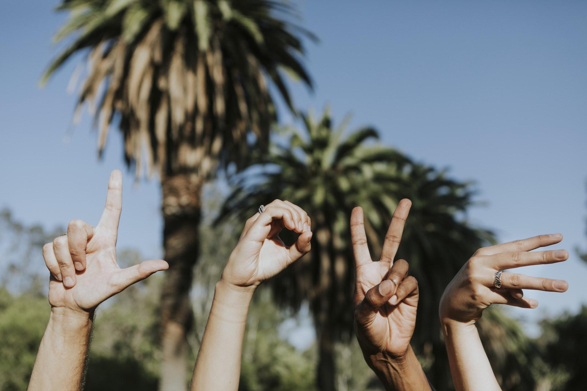 Les meilleures applications pour apprendre la langue des signes sur Android