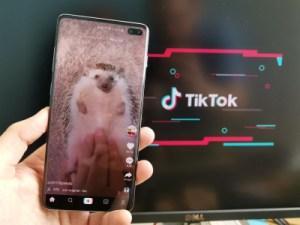 L'app de la semaine: TikTok me captive, même si je suis trentenaire