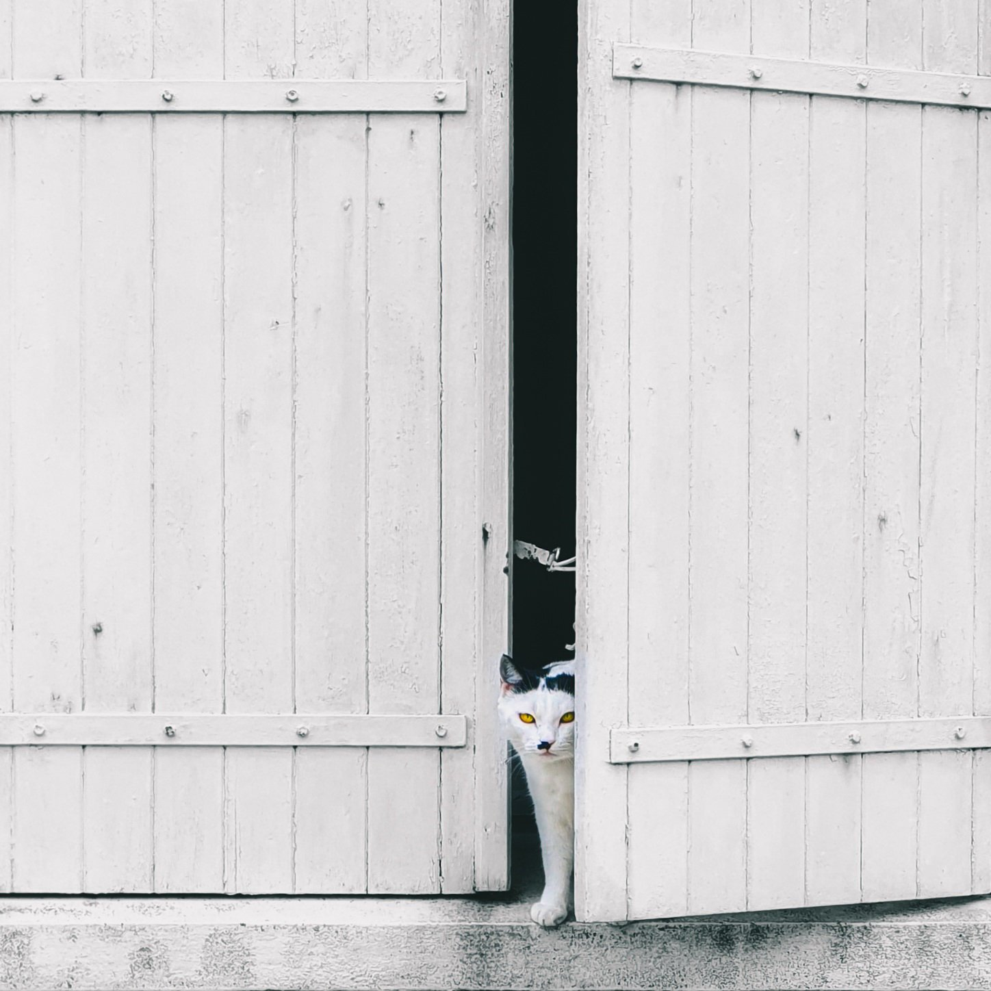 La photographie minimaliste ou l'art d'aller à l'essentiel