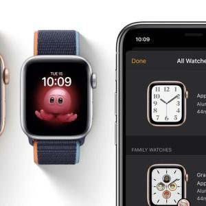 Bug iOS 14 et WatchOS 7 : Apple suggère de réinitialiser les appareils