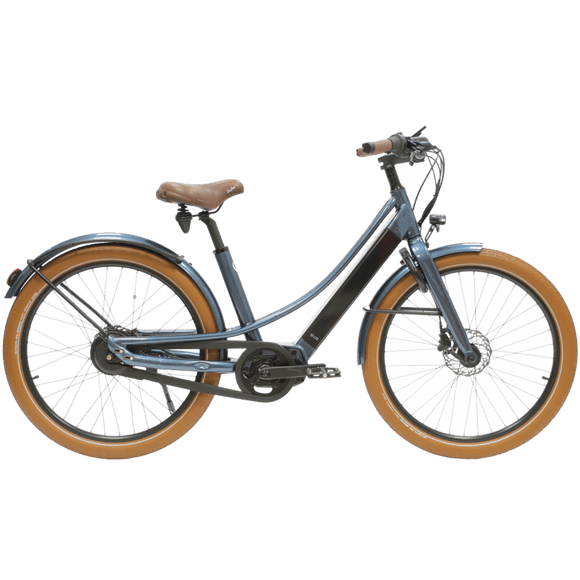 Reine Bike (2021)