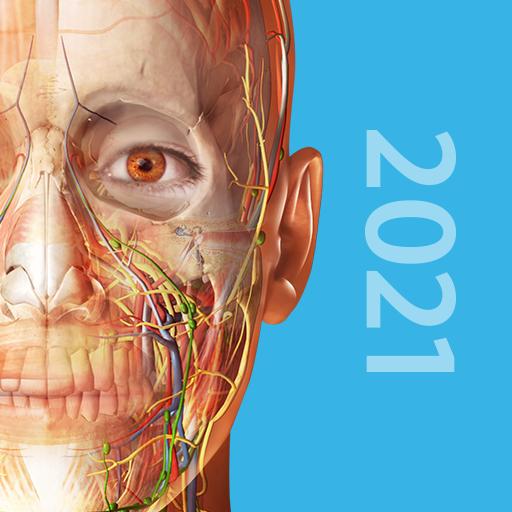 Atlas d'anatomie humaine 2019