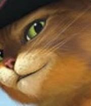 bande-annonce-le-chat-potte-180×124