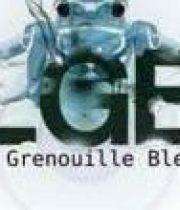 festival-grenouille-bleue-2012-180×124