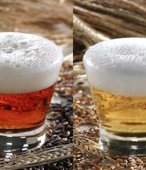 brasseurs-biere-portes-ouvertes