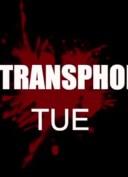 journee-internationale-souvenir-trans