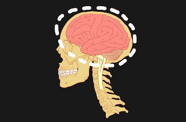 psychologie-2013