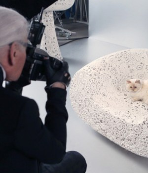 chat-lagerfeld-maquillage