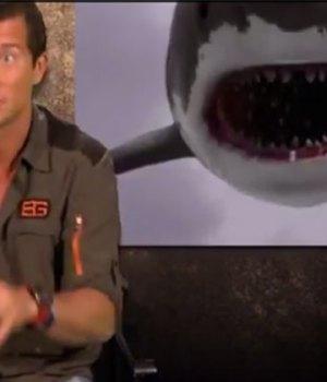 bear-grylls-hunger-games-sharknado