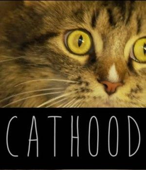 cathood-parodie-boyhood-chatons