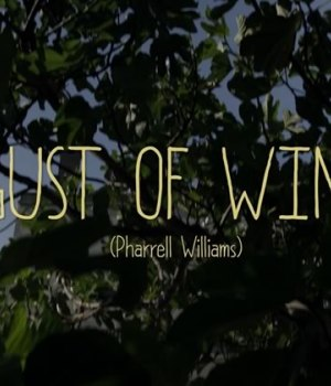 gust-of-wind-pharrell-williams-repris-waxx-morgane-imbeaud