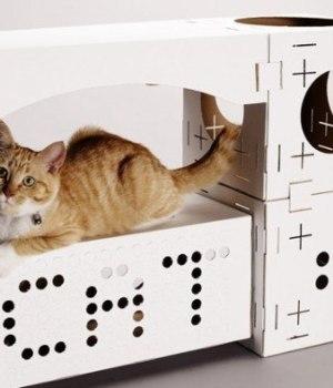 blocks-maisons-chat-carton