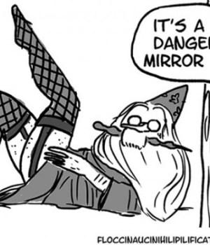 dumbledore-betise-bd