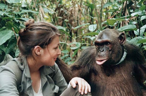 amandine-primatologue-rencontre