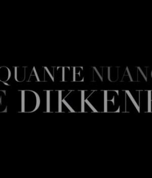 cinquante-nuances-de-dikkenek