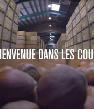 product-arte-documentaire-consommation