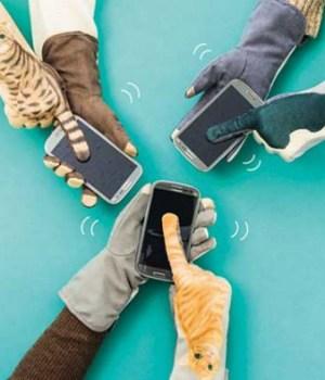 gants-chats-smartphones