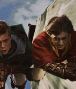 harry-potter-quidditch-set