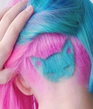 rainbow-cat-coiffure