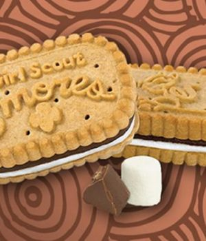 biscuits-scoutes-amazon