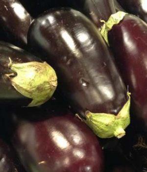 comment-cuisiner-aubergines-astuces