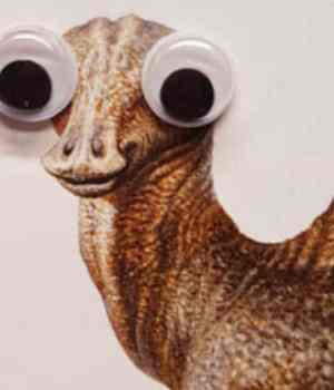 dinosaures-googly-eyes