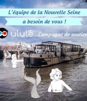 nouvelle-seine-crue