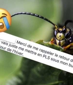 best-of-commentaires-semaine-43
