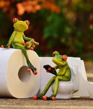 comment-essuyer-toilettes