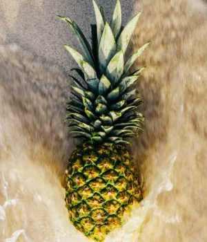 ananas-gout-sperme