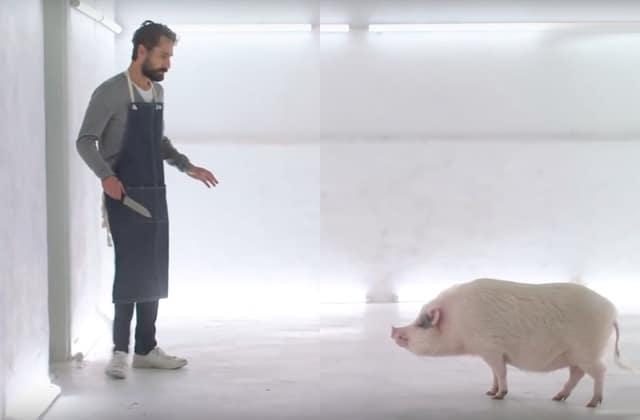 court-metrage-tuer-cochon