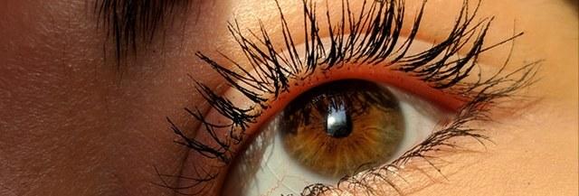 soin-lash-lift-lifting-sourcils