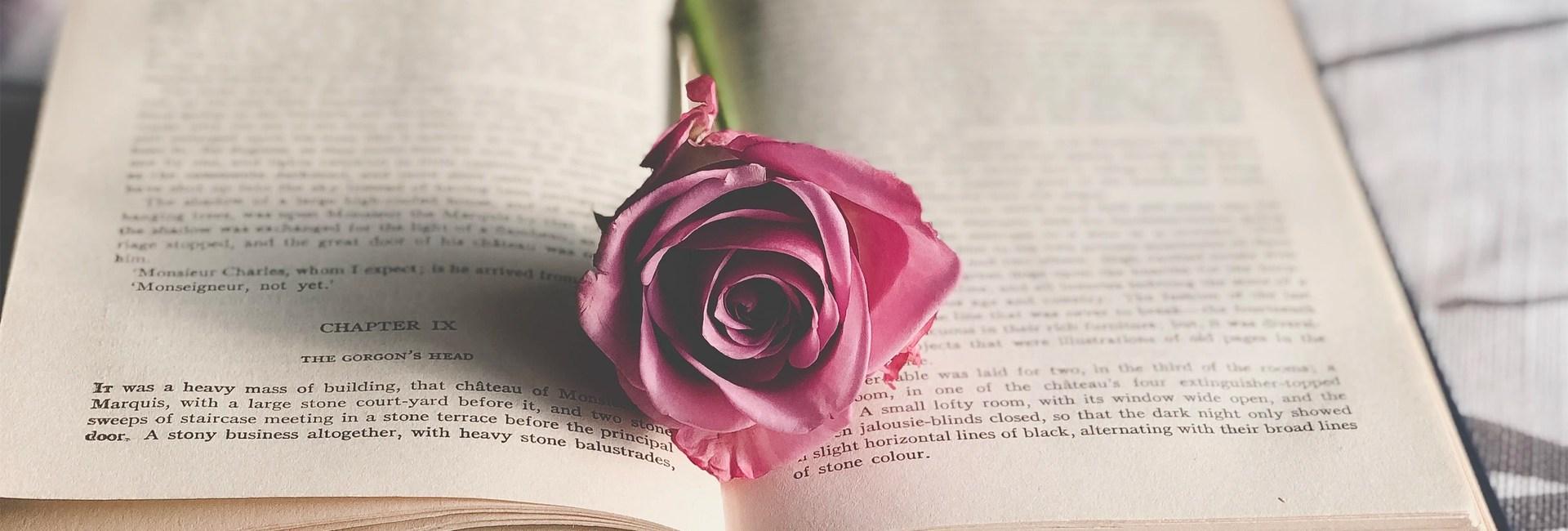 livre-rose